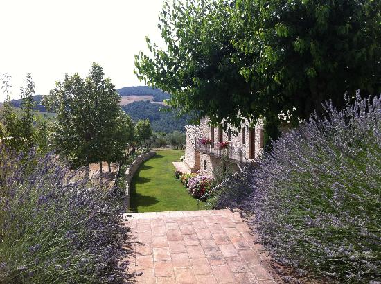 Tenuta Monte Volparo: steps down to the rooms