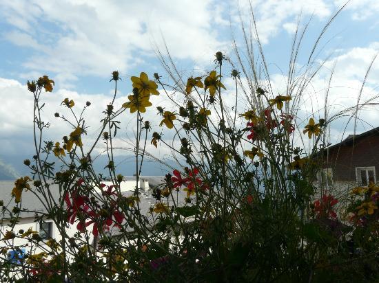 Le Grand Tetras Hotel: Vue du balcon fleuri