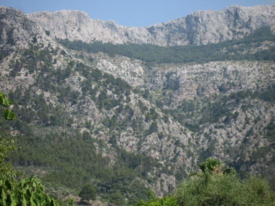 Finca Ca's Sant: Mountains behind the Finca