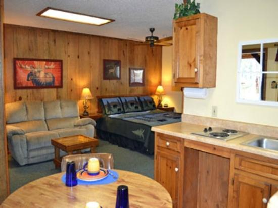 Shadow Mountain Lodge and Cabins: Spacious Lodge Room
