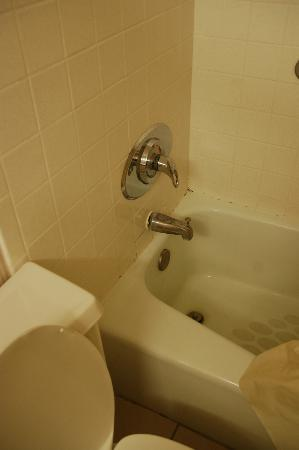 Radisson Hotel Lubbock Downtown: Nasty tub and faucet not attached to wall.