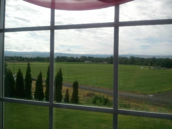 A Room With a View: View from dining room