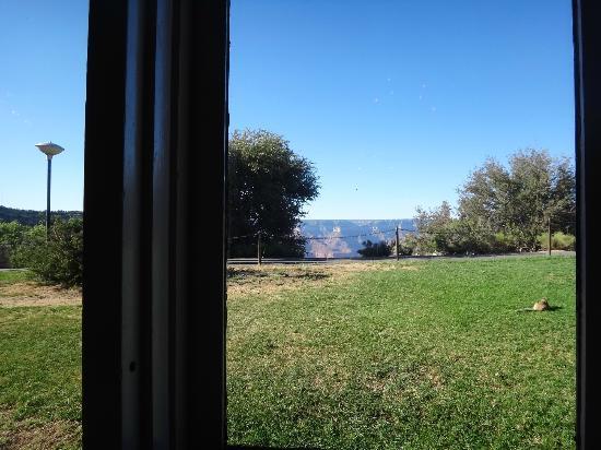 Arizona Room: View from window