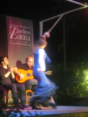 Jardines De Zoraya: A wonderful performance!
