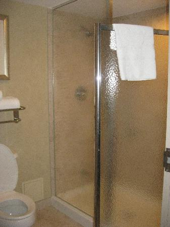 Homewood Suites by Hilton Toronto-Markham : Shower and toilet (in a separate room than the sink)