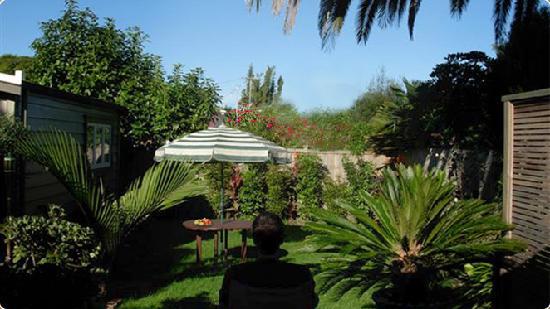Karin's Garden Villa B&B: Oasis