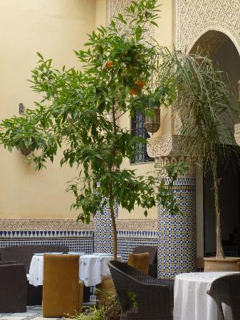 Riad Salam Fes: Near the pool