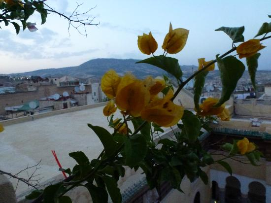 Riad Salam Fes: Roof terrace