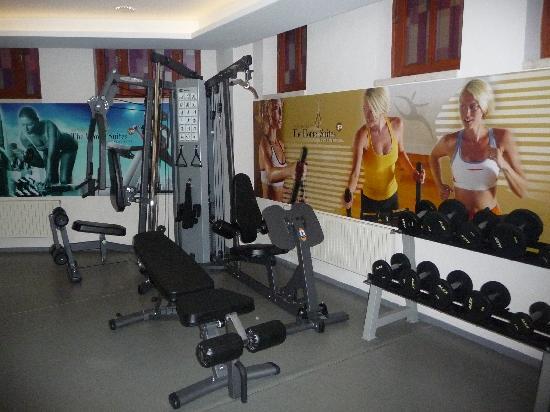 GLK PREMIER The Home Suites & Spa : salle de gym