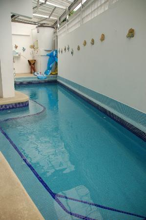 Casa Cuba Hostal S.A.: Small pool to cool off