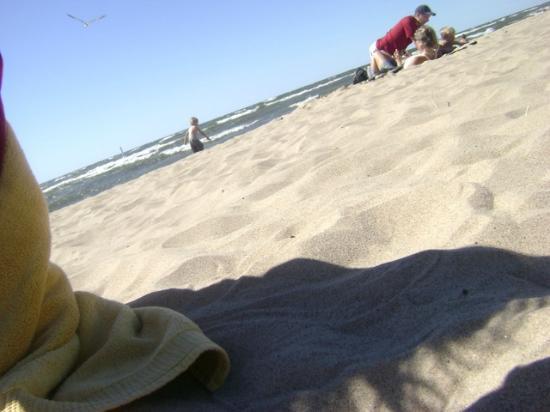 Oval Beach: beach