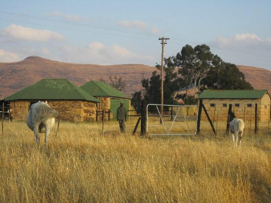 Bokpoort Cowboy Ranch : View