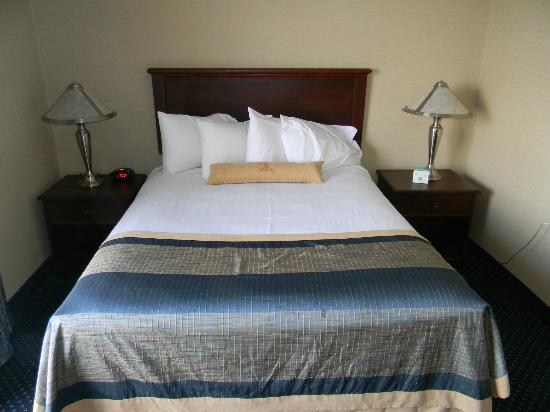 Ramada Jordan/Beacon Harbourside Resort: queen bed