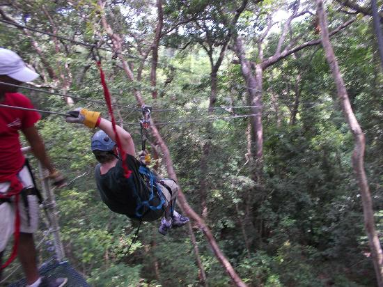 Clip N  Zip Canopy Tours: and away we go