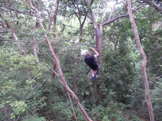 Clip N  Zip Canopy Tours: through the trees