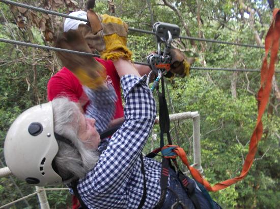 Clip N  Zip Canopy Tours: 65 years old