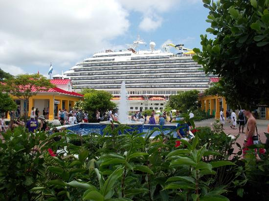 Clip N  Zip Canopy Tours: the cruise ship from mahogany bay market place