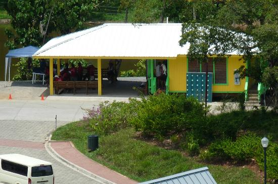 Clip N  Zip Canopy Tours: clip n zip's office