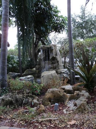 Universal Palms Hotel: jardin piscine