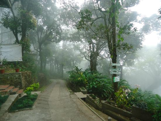 Great Escapes Resorts: Greenery