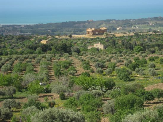 Sabbia d'Oro Bed & Breakfast: San Leone is ideal for exploring Agrigento