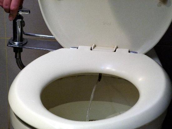 โรงแรมซันเลค: The toilet