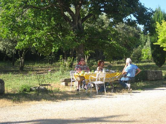 Mas la Vitalis : Breakfast in the garden, living like god in France!