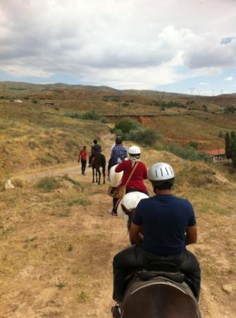 Akhal-Teke Horse Riding Center: not much of a view