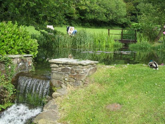 The Old Rectory Hotel: Waterfall and pond