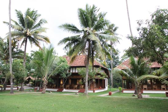 Coconut Lagoon: cottage