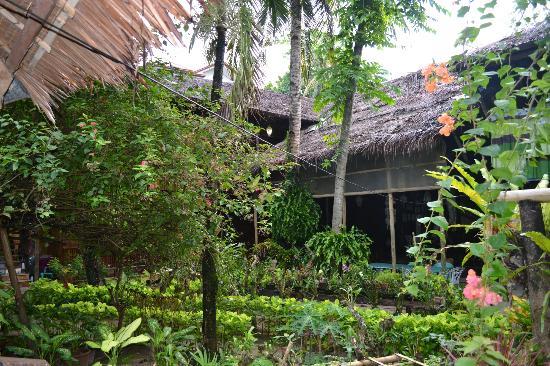Nice Garden Along The Pathway Photo De Orchids Resort