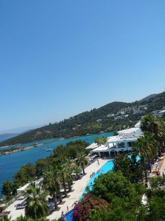 Club Blue Dreams: view