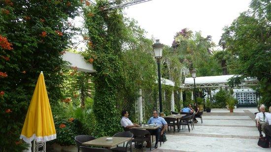 Hotel Saint George El Djazair : Garden terrace