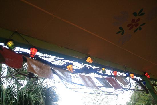 Nimbin Rox YHA: Lights