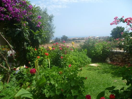 Livadaki Village Hotel 사진