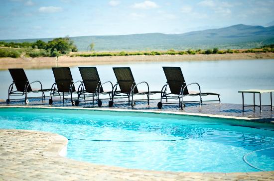 Buffelsdrift Game Lodge: Relaxing Pool facility