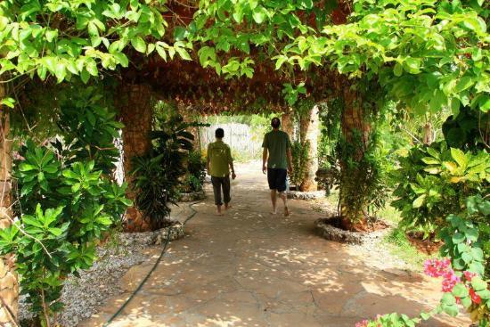 Seasons Lodge Zanzibar : Pergola