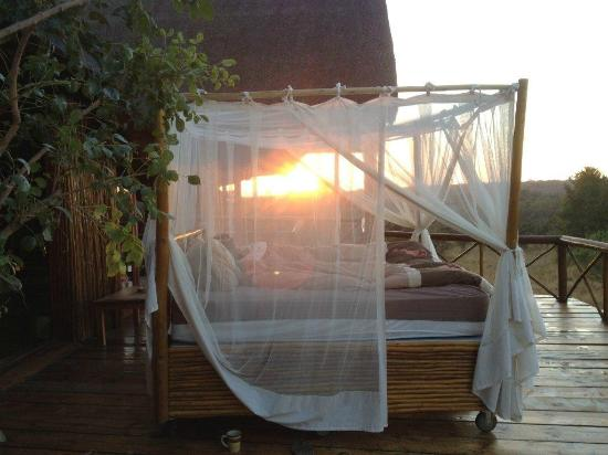 Pezulu Tree House Game Lodge: Waking up on the verandah to glorious sun rise
