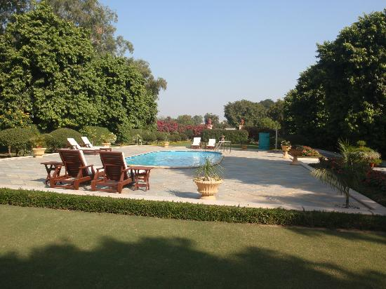 Taj SMS Hotel: Picturesque pool