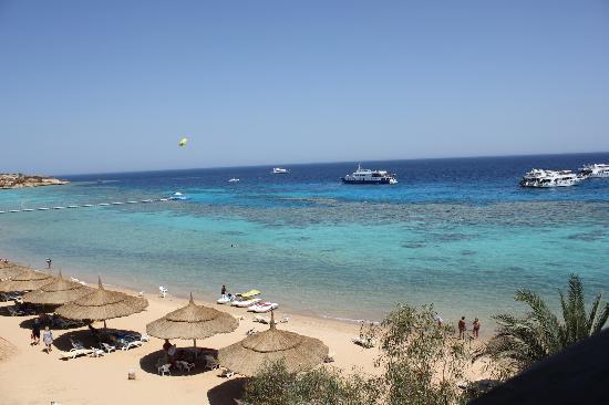 Faraana Reef Resort: Beach
