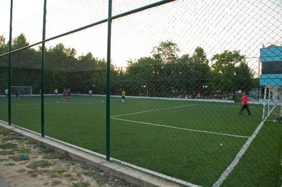 MERDEM: soccer field