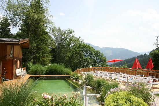 Gartenhotel  Daxer: The Natural pool