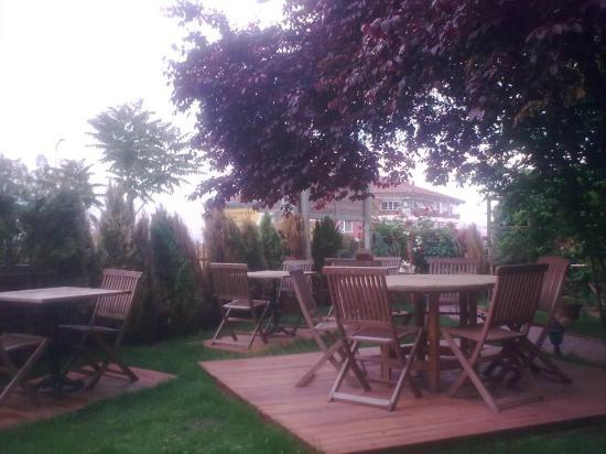 Tenes Fish Restaurant: Our lovely garden
