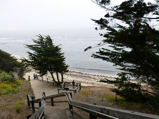 Seal Cove Inn: View of Ocean Along the Pathway