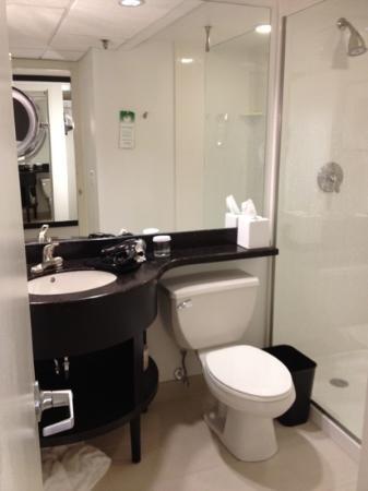 Crowne Plaza, Suffern: bathroom