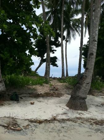 Hotel Boca Brava: Isla Gomez (white sand beach)