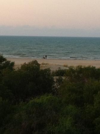 Gammarth, Tunisia: vue prise de l'hôtel / 06.12