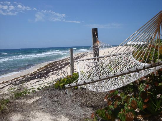 Abaco Inn: I loved this hammock outside room 5