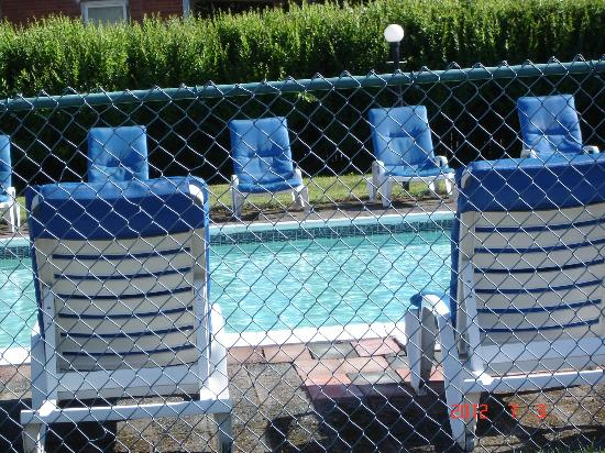 Turf & Spa Motel: clean pool with nice lounge chairs