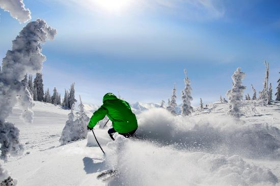 Silver Star, Canada: Fresh Champagne Powder